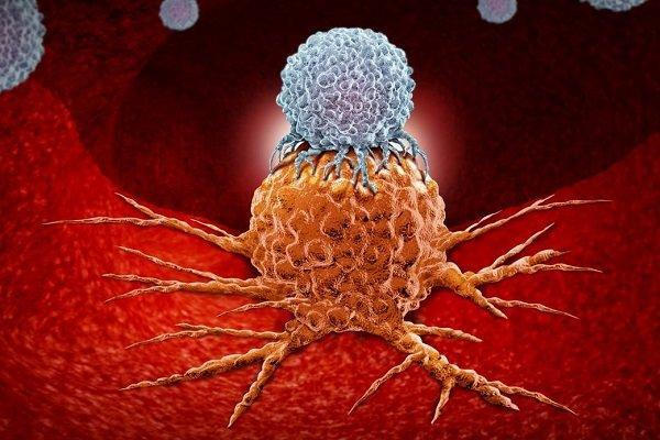 برآورد دقیق عمر سلول های سرطانی با فناوری دانشگاه آکسفورد