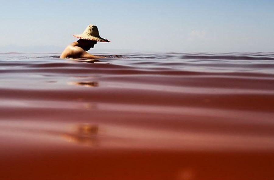 خبرنگاران کمبود اکسیژن علت قرمز شدن آرتمیاهای دریاچه ارومیه است