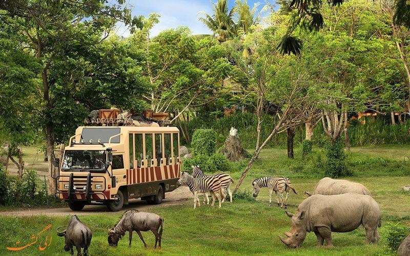 نکات ضروری هنگام سفر به بالی اندونزی