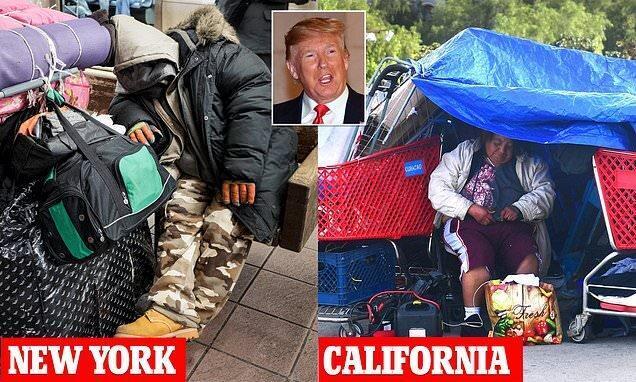 ترامپ: اگر صلاحیت باشد برطرف مشکل بی خانمان ها آسان است