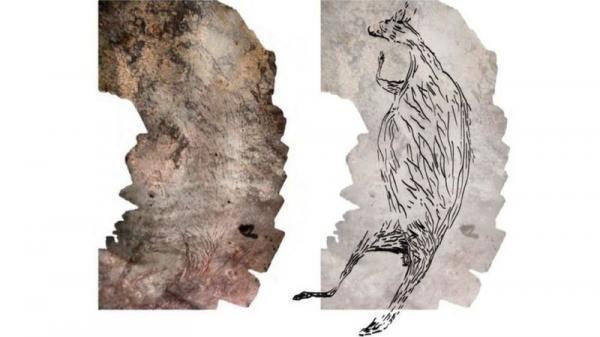 تصویر 17 هزار ساله یک کانگورو