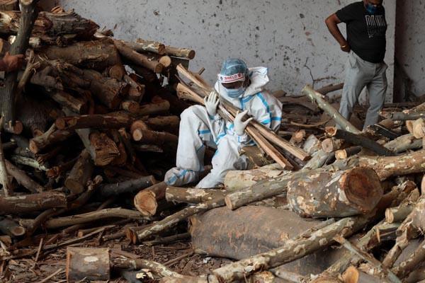 طوفان شن در چین ، جانوری که در معرض انقراض است (گزارش تصویری)