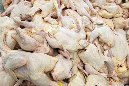 کشف 514 قطعه مرغ قاچاق از ابتدای اسفند تا 8 فروردین ، قاچاق جوجه یک روزه صرفاً یک آدرس غلط است